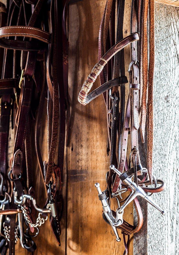 Stirrups and horseback riding equipment hanging up at The Ranch At Rock Creek